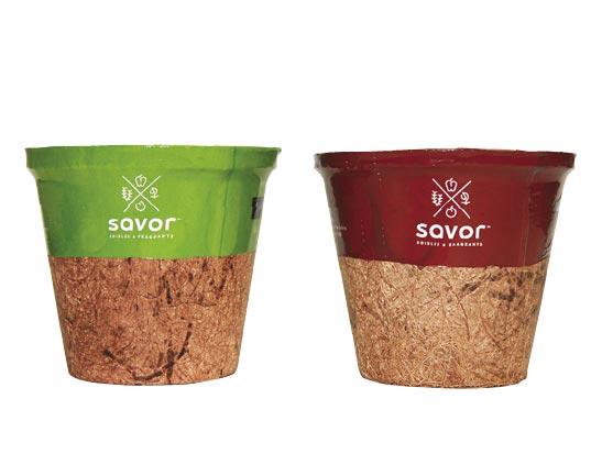 4.0 Coir Savor™ Sold 10 per Tray