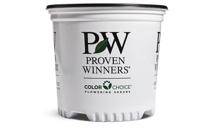 1 Gallon ColorChoice® Sold Individual