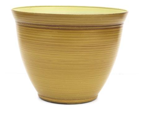 12.0 Tropical Patio Honey Woodbrush Sold Individual