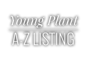 Young Plant A-Z Listing