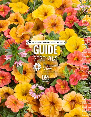 Go & Grow® Hanging Basket Recipe Guide 2020